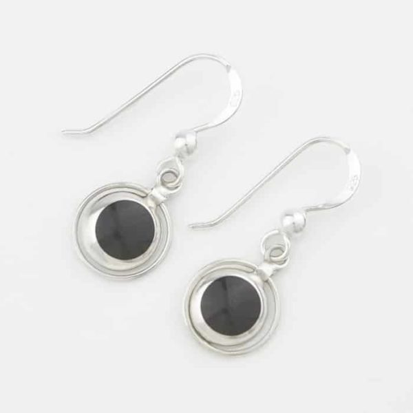 Dangle Stone & Circle Earrings