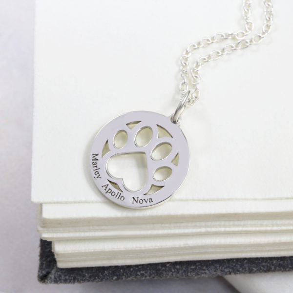 Paw Print Coin Necklace by silvery jewellery in south africa